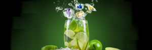 Social-media-lime-refresh-your-business-home